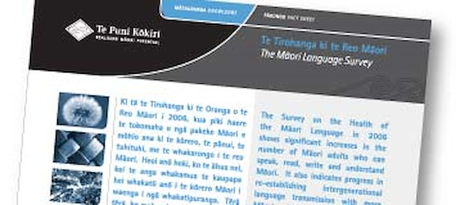 Maori Language Survey