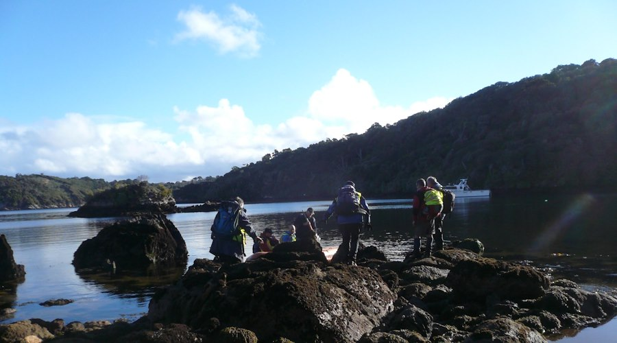 Māori land owners on Rakiura are assessing the viability of an eco-tourism kiwi spotting venture with support from Te Puni Kōkiri via the Whenua Māori Fund.
